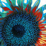 Eye Of The Sunflower Print by Music of the Heart