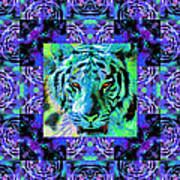Eyes Of The Bengal Tiger Abstract Window 20130205m80 Print by Wingsdomain Art and Photography