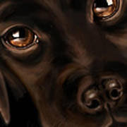 Eyes Print by Veronica Minozzi