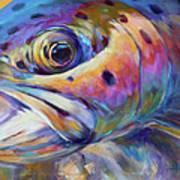Face Of A Rainbow- Rainbow Trout Portrait Print by Savlen Art