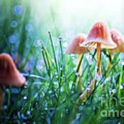 Fairytopia Print by Sylvia Cook