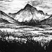 Faith As A Mustard Seed Print by Aaron Spong