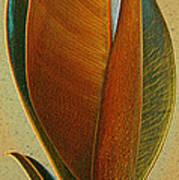 Fantasy Leaf Print by Ben and Raisa Gertsberg