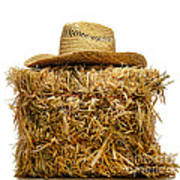 Farmer Hat On Hay Bale Print by Olivier Le Queinec