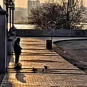 Feeding The Birds At Dawn Print by Bill Cannon