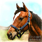 Filly Print by Paul Tagliamonte