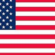 Flag Of The United States Of America Print by Anonymous