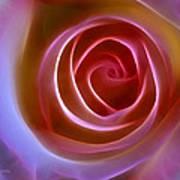 Floral Light Print by Ann Croon