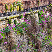 Flower Wall Along The Arno River- Florence Italy Print by Jon Berghoff