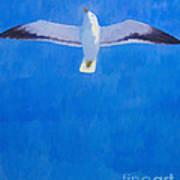 Flying Seagull Print by Lutz Baar