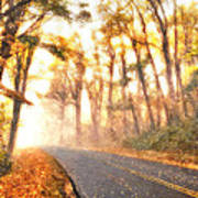 Foggy Fall Wonderland - Blue Ridge Parkway II Print by Dan Carmichael