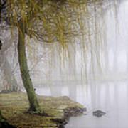 Foggy Lake Morning Print by Vicki Jauron