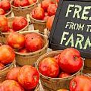 Fresh Tomatoes In Baskets At Farmers Market Print by Teri Virbickis