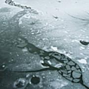 Frozen Pond Print by Gary Eason