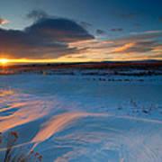 Ft Collins Snow Sparkles Print by Preston Broadfoot