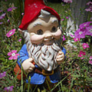 Garden Gnome Print by Judy Hall-Folde