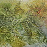 Garden Mist Print by Patsy Sharpe