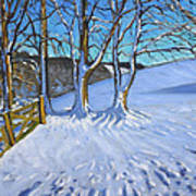 Gate And Trees Winter Dam Lane Derbyshire Print by Andrew Macara
