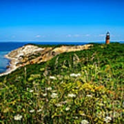 Gay Head Light And Cliffs Print by Mark Miller