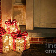 Gift Of Lights Print by Olivier Le Queinec