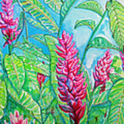Ginger Jungle Print by Kelly     ZumBerge