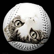 Grand Kitty Cuteness Baseball Square B W Print by Andee Design