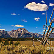 Grand Tenton Overlook Print by Robert Bales