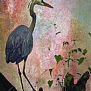 Great Blue Heron Among Cypress Knees Print by J Larry Walker