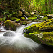 Great Smoky Mountains Gatlinburg Tn Roaring Fork - Gift Of Life Print by Dave Allen