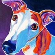 Greyhound - Halle Print by Alicia VanNoy Call