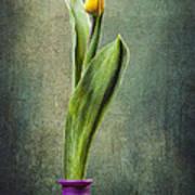 Grunge Yellow Tulip Print by Erik Brede