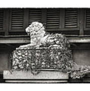 Guardian In Black And White Print by Brenda Bryant