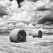 Haybales Uk Print by Jon Boyes