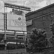Home Of The Minnesota Twins Print by Susan Stone