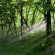 Hope Lights Eternal - Blue Ridge Parkway I Print by Dan Carmichael