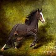 Horse Angel Print by Dorota Kudyba