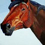 Horse Head Print by Mike Jory