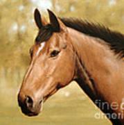 Horse Portrait II Print by John Silver