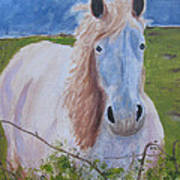 Horse With Stormy Skies Print by Dawn Dreibus