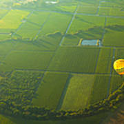 Hot Air Balloon Over Napa Valley California Print by Diane Diederich
