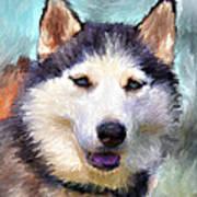 Huskies Print by Yury Malkov