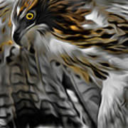 I Am Redtail Square Print by Bill Wakeley