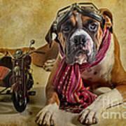 I Want To Ride Print by Domenico Castaldo