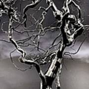 Ice Veins In The Sky Print by Joenne Hartley