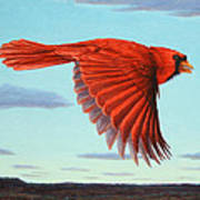 In Flight Print by James W Johnson