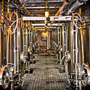 Inside Winery Print by Elena Elisseeva