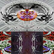 Inspiring Trust Spider - Spirit 2013 Print by James Warren