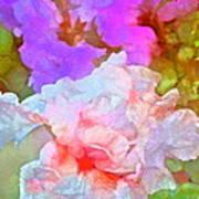Iris 60 Print by Pamela Cooper