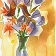 Irises With Stars Of Bethlehem Print by Kip DeVore