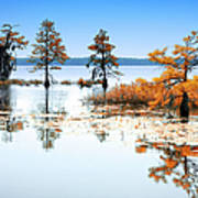 Isle Of Peace - North Carolina Print by Dan Carmichael